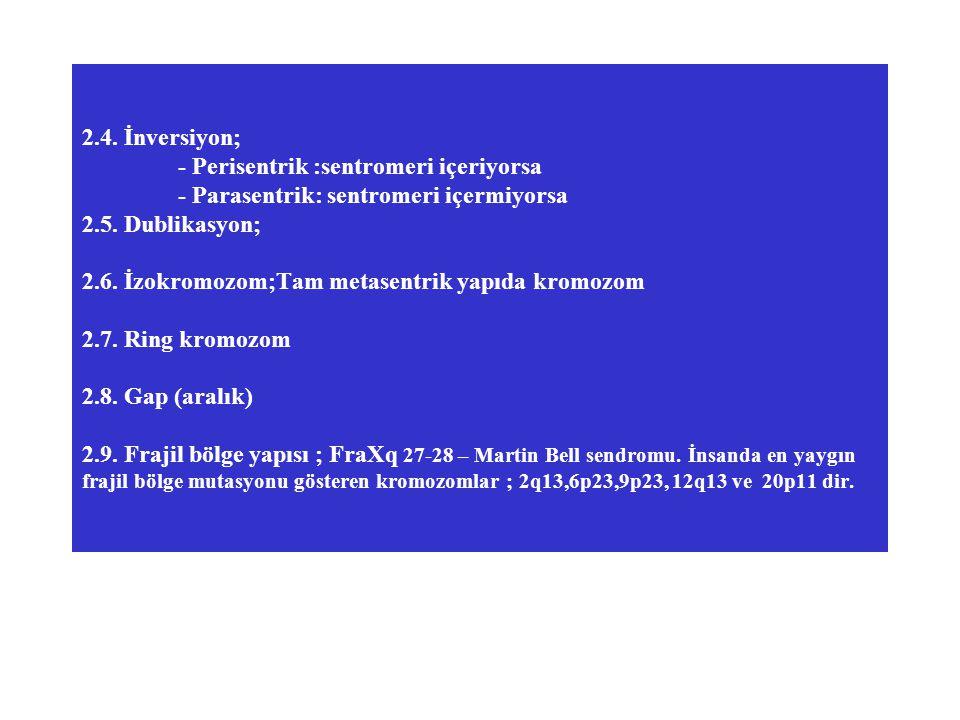 2.4. İnversiyon; - Perisentrik :sentromeri içeriyorsa - Parasentrik: sentromeri içermiyorsa 2.5. Dublikasyon; 2.6. İzokromozom;Tam metasentrik yapıda