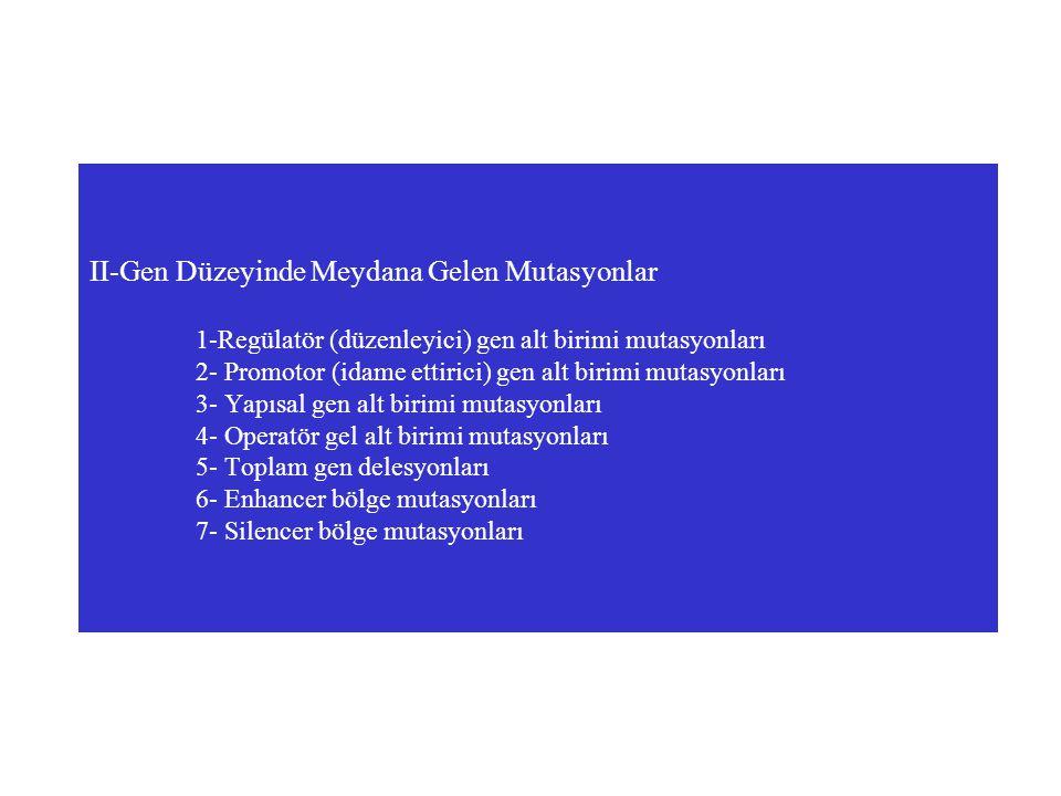 II-Gen Düzeyinde Meydana Gelen Mutasyonlar 1-Regülatör (düzenleyici) gen alt birimi mutasyonları 2- Promotor (idame ettirici) gen alt birimi mutasyonl
