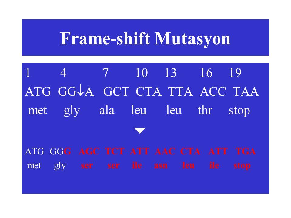 Frame-shift Mutasyon 1 4 7 10 13 16 19 ATG GG  A GCT CTA TTA ACC TAA met gly ala leu leu thr stop  ATG GGG AGC TCT ATT AAC CTA ATT TGA met gly ser s