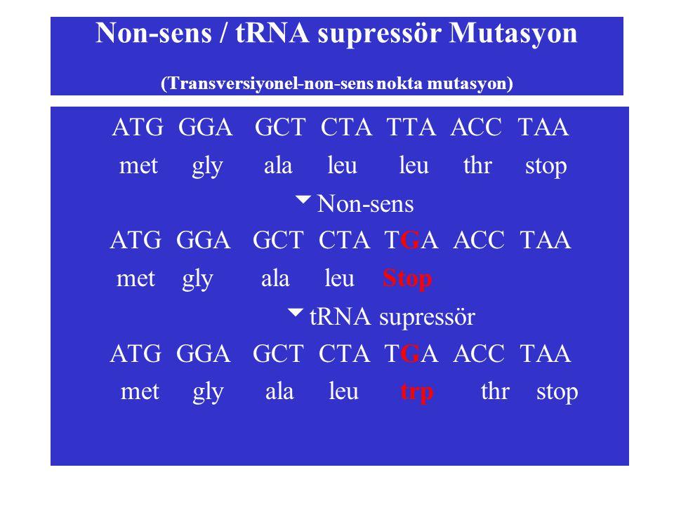 Non-sens / tRNA supressör Mutasyon (Transversiyonel-non-sens nokta mutasyon) ATG GGA GCT CTA TTA ACC TAA met gly ala leu leu thr stop  Non-sens ATG G