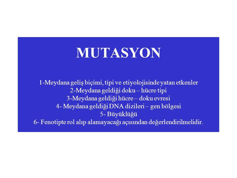 MUTASYON 1-Meydana geliş biçimi, tipi ve etiyolojisinde yatan etkenler 2-Meydana geldiği doku – hücre tipi 3-Meydana geldiği hücre – doku evresi 4- Me