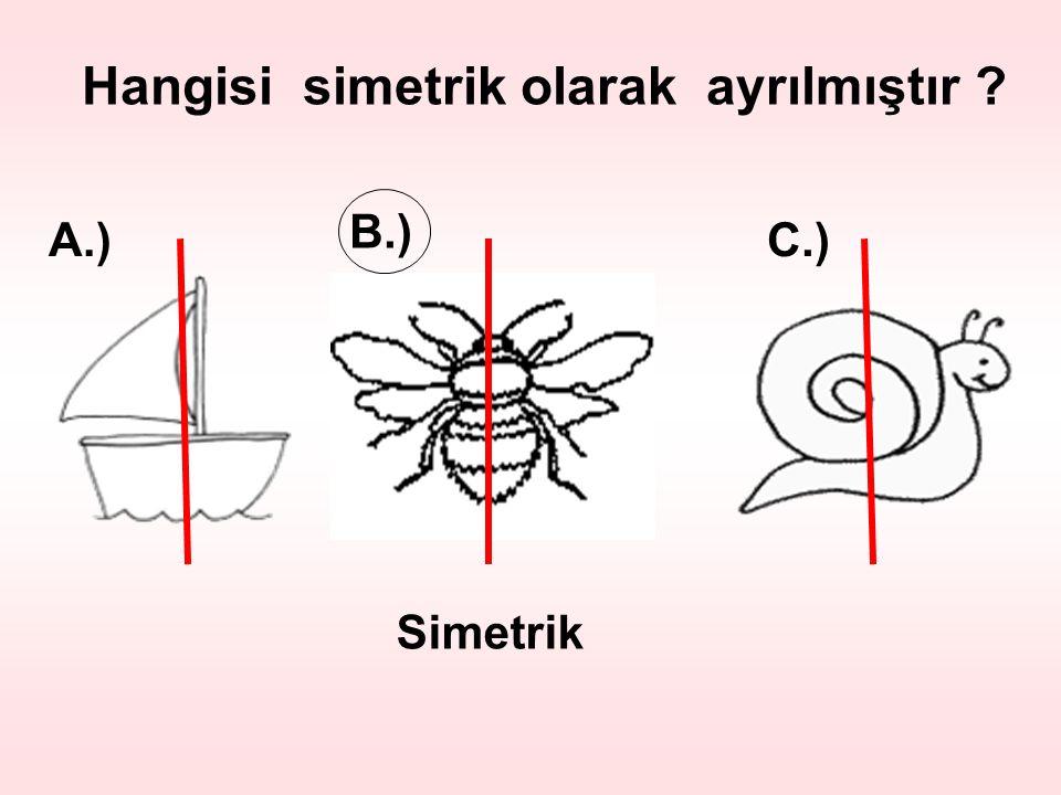 Hangisi simetrik olarak ayrılmıştır ? B.) A.)C.) Simetrik