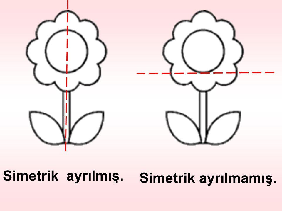 Simetrik ayrılmış. Simetrik ayrılmamış.