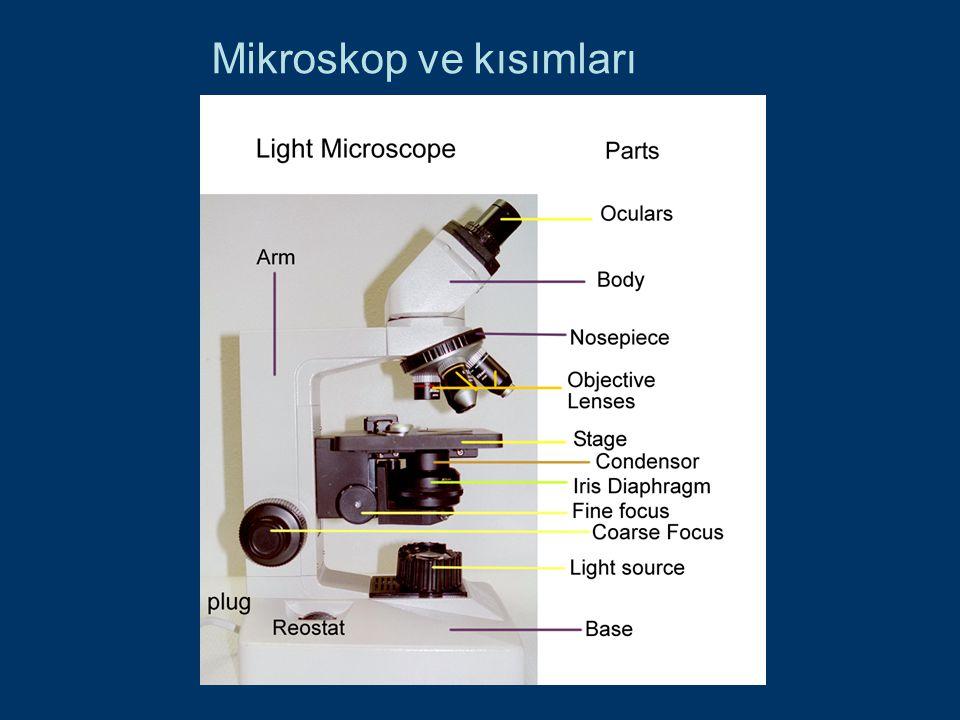 Mikroskop ve kısımları