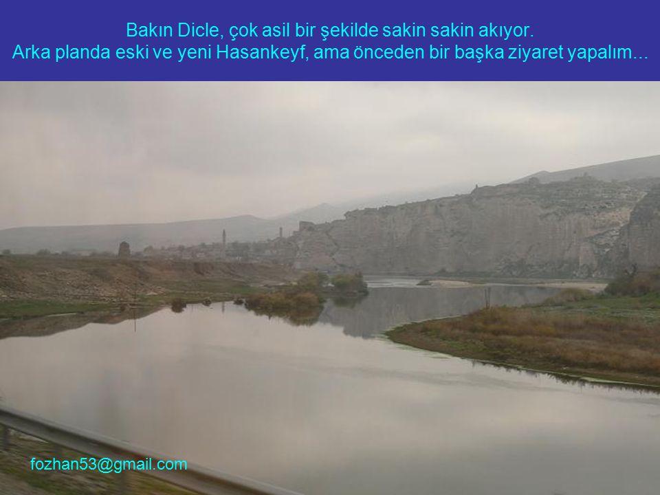 Baraj yapılmasa da bu türbe ve benzeri tarihi eserlerin acil korumaya alınması, en azından bundan sonraki tahribatları önleyebilir.