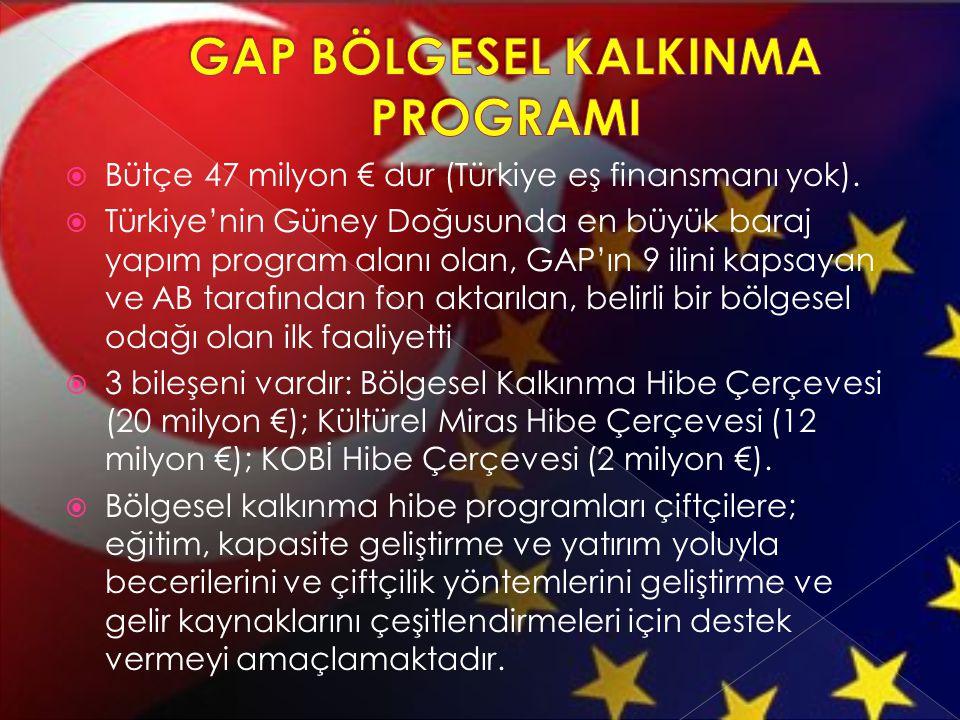  Bütçe 47 milyon € dur (Türkiye eş finansmanı yok).  Türkiye'nin Güney Doğusunda en büyük baraj yapım program alanı olan, GAP'ın 9 ilini kapsayan ve