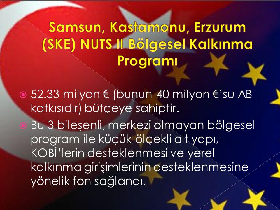  52.33 milyon € (bunun 40 milyon €'su AB katkısıdır) bütçeye sahiptir.  Bu 3 bileşenli, merkezi olmayan bölgesel program ile küçük ölçekli alt yapı,