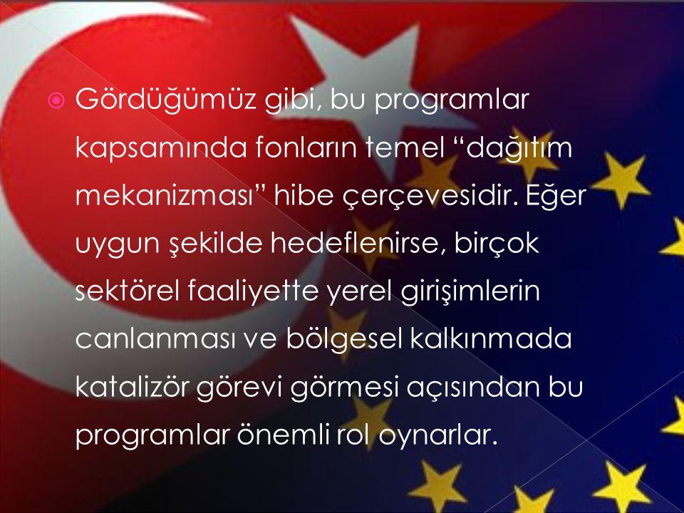  AB ile bütünleşmede Türkiye açısından birçok zorlu konu bulunmaktadır.
