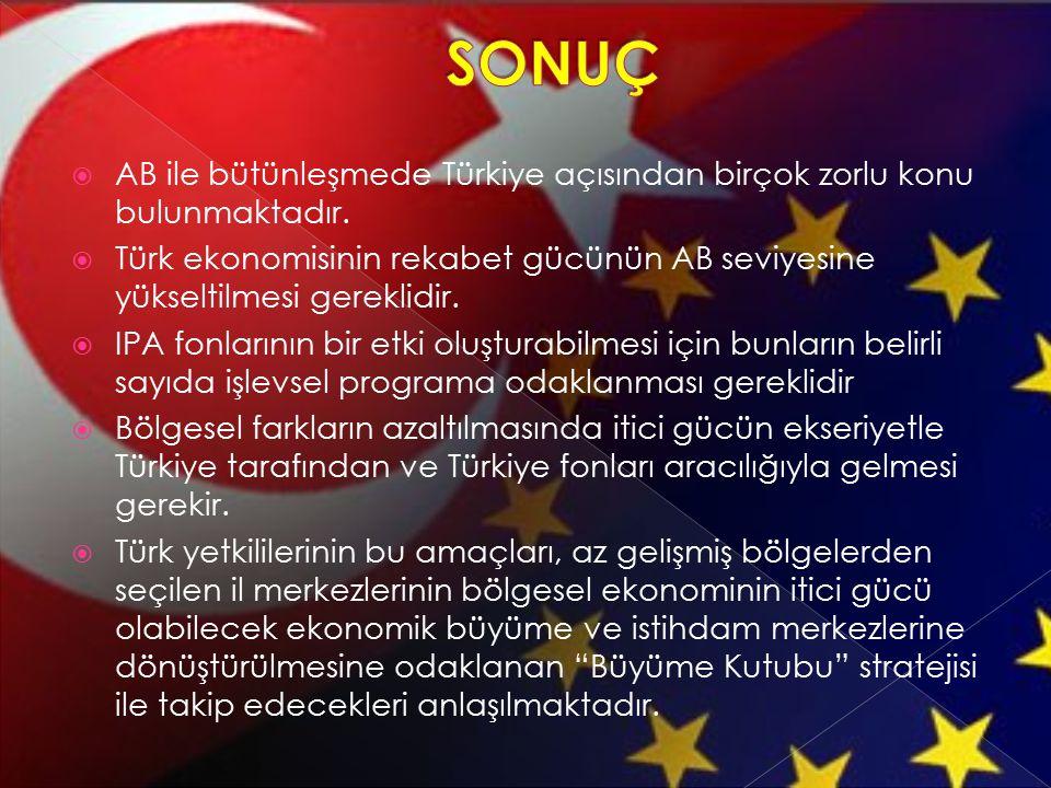  AB ile bütünleşmede Türkiye açısından birçok zorlu konu bulunmaktadır.  Türk ekonomisinin rekabet gücünün AB seviyesine yükseltilmesi gereklidir. 