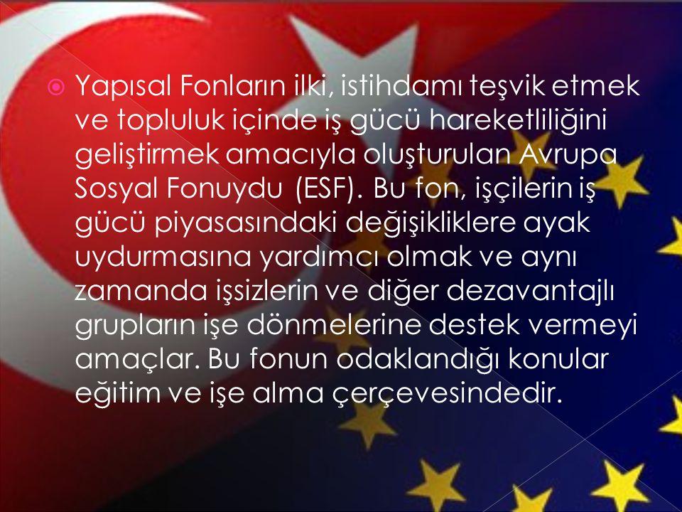  Yapısal Fonların ilki, istihdamı teşvik etmek ve topluluk içinde iş gücü hareketliliğini geliştirmek amacıyla oluşturulan Avrupa Sosyal Fonuydu (ESF