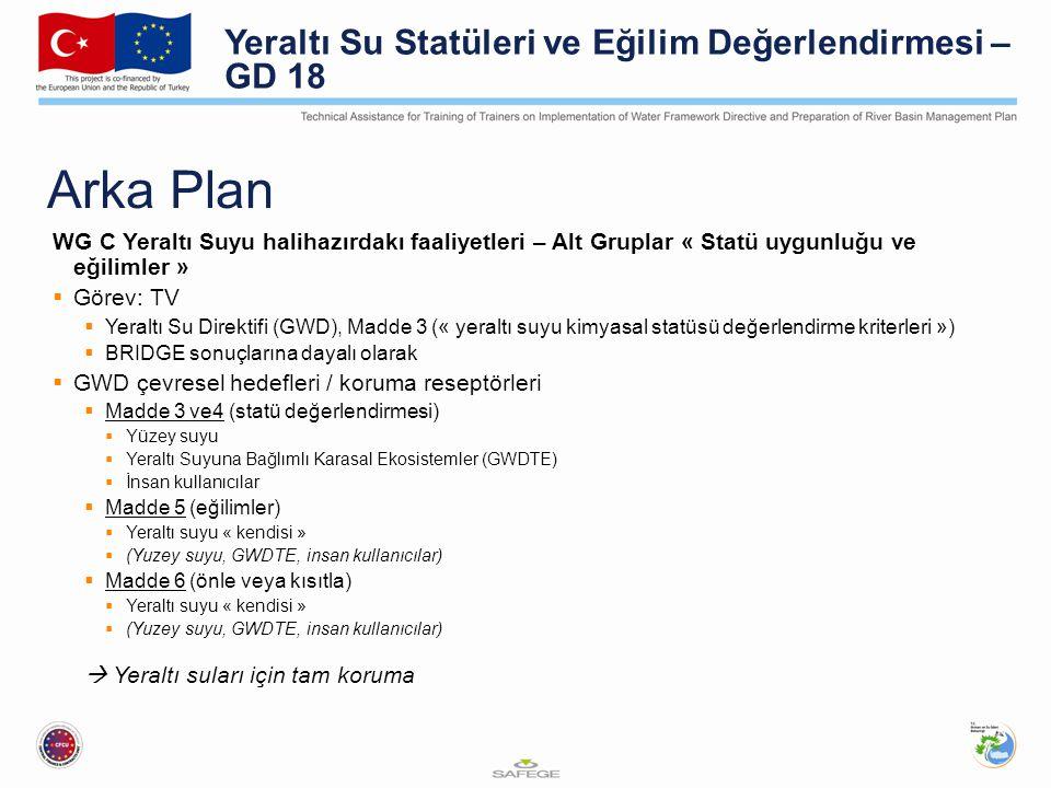 Arka Plan WG C Yeraltı Suyu halihazırdakı faaliyetleri – Alt Gruplar « Statü uygunluğu ve eğilimler »  Görev: TV  Yeraltı Su Direktifi (GWD), Madde 3 (« yeraltı suyu kimyasal statüsü değerlendirme kriterleri »)  BRIDGE sonuçlarına dayalı olarak  GWD çevresel hedefleri / koruma reseptörleri  Madde 3 ve4 (statü değerlendirmesi)  Yüzey suyu  Yeraltı Suyuna Bağlımlı Karasal Ekosistemler (GWDTE)  İnsan kullanıcılar  Madde 5 (eğilimler)  Yeraltı suyu « kendisi »  (Yuzey suyu, GWDTE, insan kullanıcılar)  Madde 6 (önle veya kısıtla)  Yeraltı suyu « kendisi »  (Yuzey suyu, GWDTE, insan kullanıcılar)  Yeraltı suları için tam koruma Yeraltı Su Statüleri ve Eğilim Değerlendirmesi – GD 18