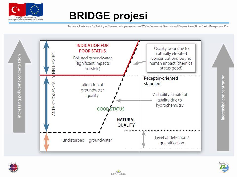 BRIDGE projesi