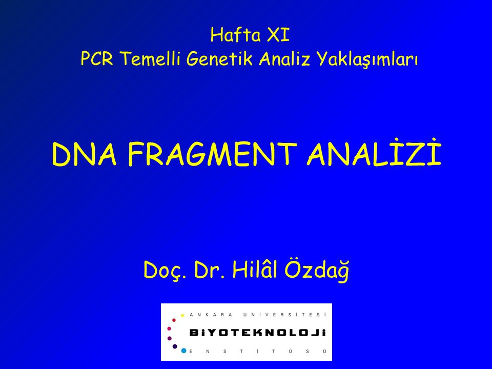 DNA FRAGMENT ANALİZİ Doç. Dr. Hilâl Özdağ Hafta XI PCR Temelli Genetik Analiz Yaklaşımları