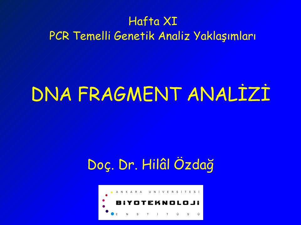 DNA FRAGMENT ANALİZİ  STR/SSR/Microsatellit Analizi  Amplified Fragment Length Polymorphism (AFLP)  Restriction Fragment Length Polymorphism (RFLP)  Loss of Heterozygosity (LOH)  MI (Microsatellite Instability)  SNP Genotipleme