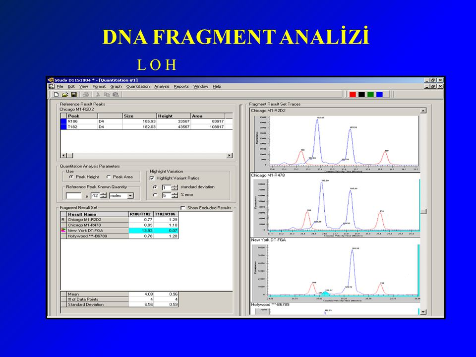 DNA FRAGMENT ANALİZİ L O H