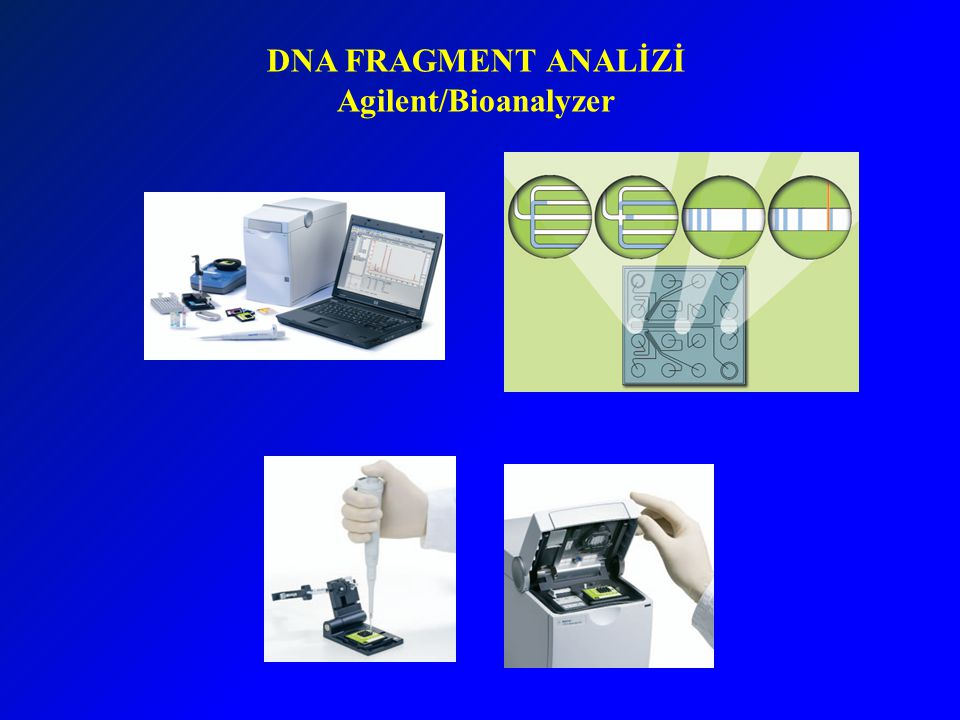 DNA FRAGMENT ANALİZİ Agilent/Bioanalyzer