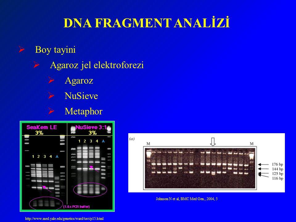 DNA FRAGMENT ANALİZİ  Boy tayini  Agaroz jel elektroforezi  Agaroz  NuSieve  Metaphor http://www.med.yale.edu/genetics/ward/tavi/p15.html Johnson N et al, BMC Med Gen., 2004, 5