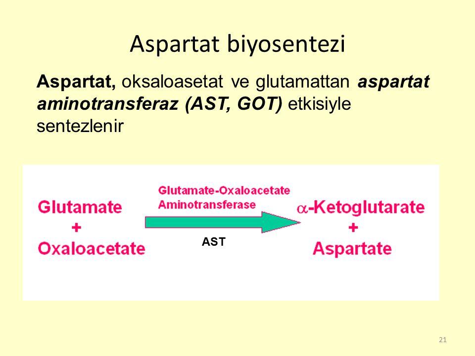 21 Aspartat biyosentezi Aspartat, oksaloasetat ve glutamattan aspartat aminotransferaz (AST, GOT) etkisiyle sentezlenir AST