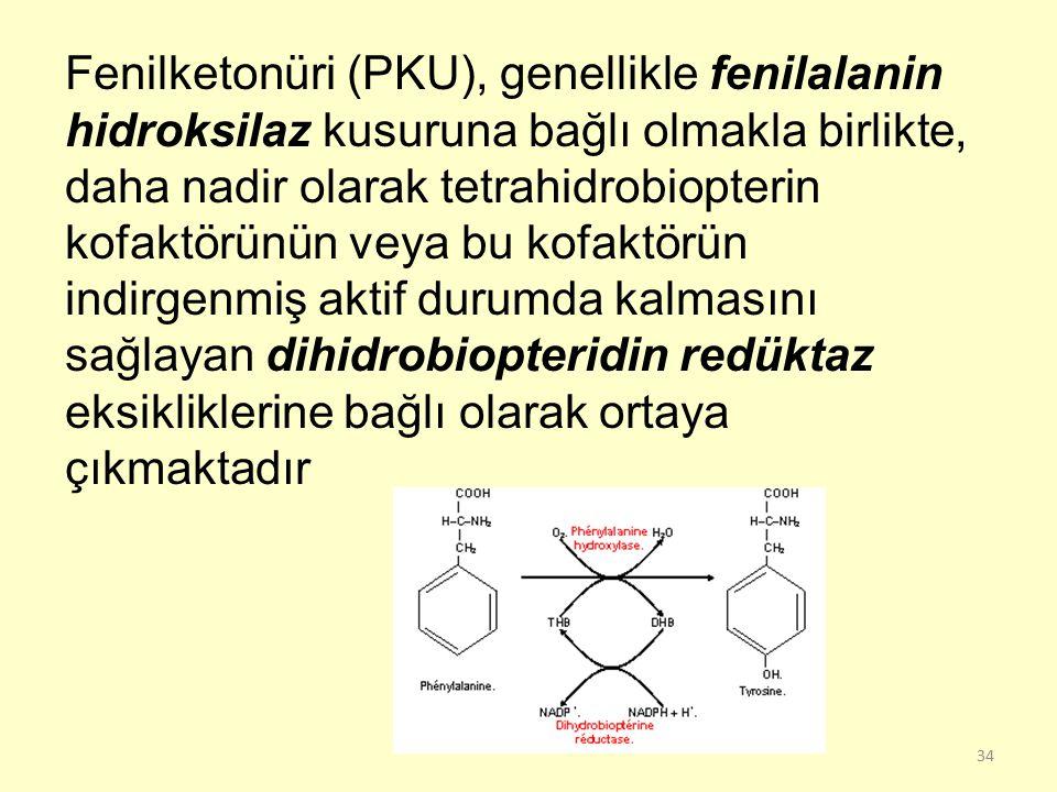34 Fenilketonüri (PKU), genellikle fenilalanin hidroksilaz kusuruna bağlı olmakla birlikte, daha nadir olarak tetrahidrobiopterin kofaktörünün veya bu
