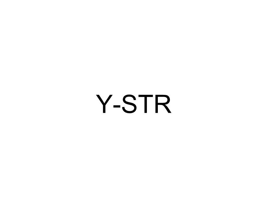 Y-STR