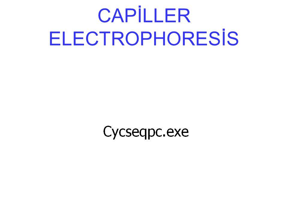 CAPİLLER ELECTROPHORESİS