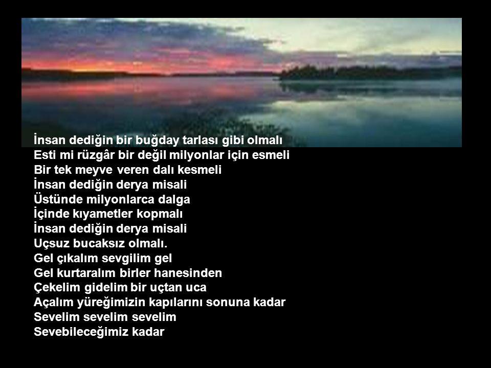 Ah bu türküler Türkülerimiz Ana sütü gibi candan Ana sütü gibi temiz Türkülerde tüter dağ dağ, yayla yayla Köyumüz, köylümüz, memleketimiz.