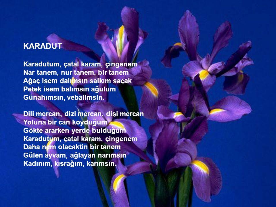 MARİFET Marifet hiç ezilmemek bu dünyada Ama biçimine getirip ezerlerse Güzel kokmak Kekik misali Lavanta çiçeği misali Fesleğen misali Itır misali İs