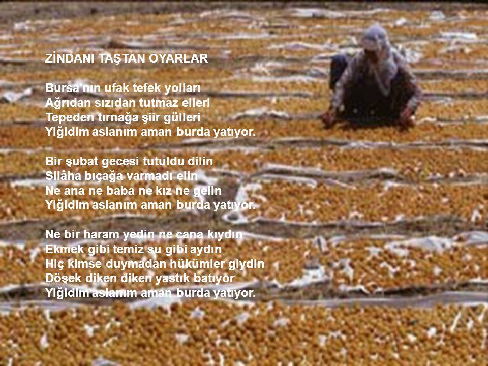 ZİNDANI TAŞTAN OYARLAR Bursa nın ufak tefek yolları Ağrıdan sızıdan tutmaz elleri Tepeden tırnağa şiir gülleri Yiğidim aslanım aman burda yatıyor.