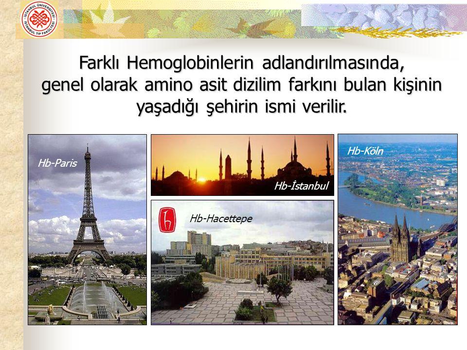 Farklı Hemoglobinlerin adlandırılmasında, genel olarak amino asit dizilim farkını bulan kişinin yaşadığı şehirin ismi verilir. Hb-İstanbul Hb-Hacettep