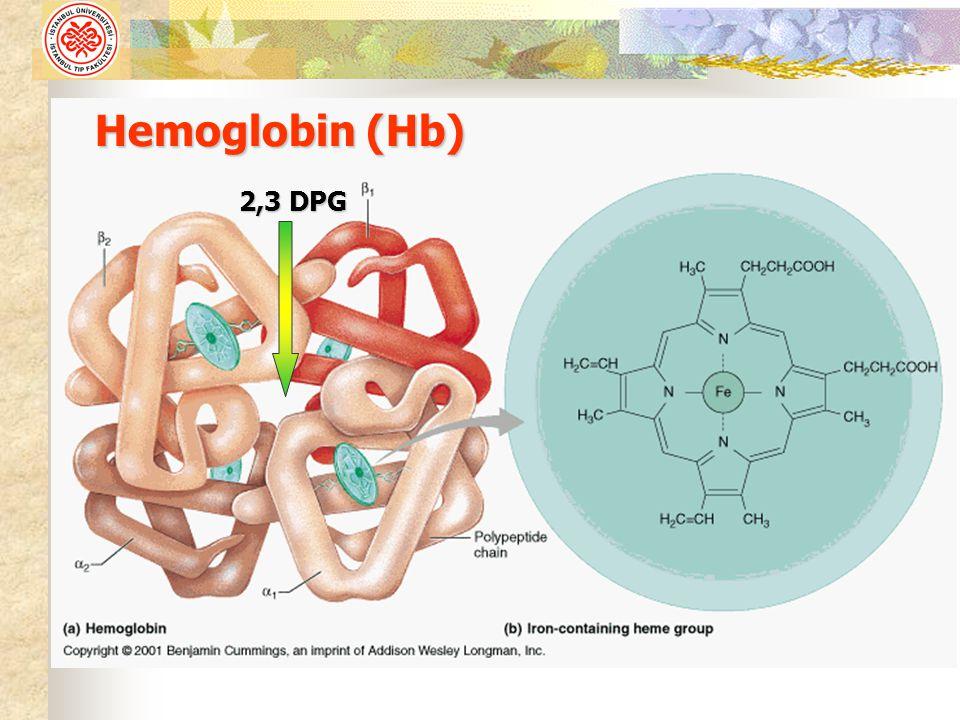 Hemoglobin (Hb) 2,3 DPG