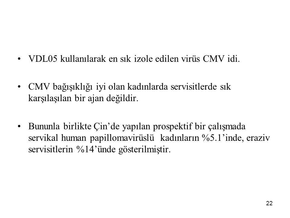 22 VDL05 kullanılarak en sık izole edilen virüs CMV idi. CMV bağışıklığı iyi olan kadınlarda servisitlerde sık karşılaşılan bir ajan değildir. Bununla