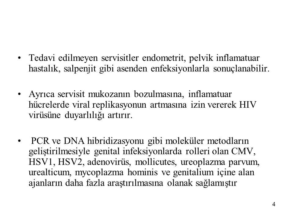 5 EBV, VSV ve enterovirüslerin sebep olduğu genital infeksiyonlar raporlanmıştır.