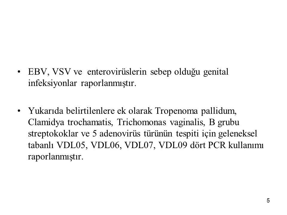 5 EBV, VSV ve enterovirüslerin sebep olduğu genital infeksiyonlar raporlanmıştır. Yukarıda belirtilenlere ek olarak Tropenoma pallidum, Clamidya troch