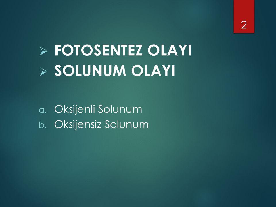  FOTOSENTEZ OLAYI  SOLUNUM OLAYI a. Oksijenli Solunum b. Oksijensiz Solunum 2