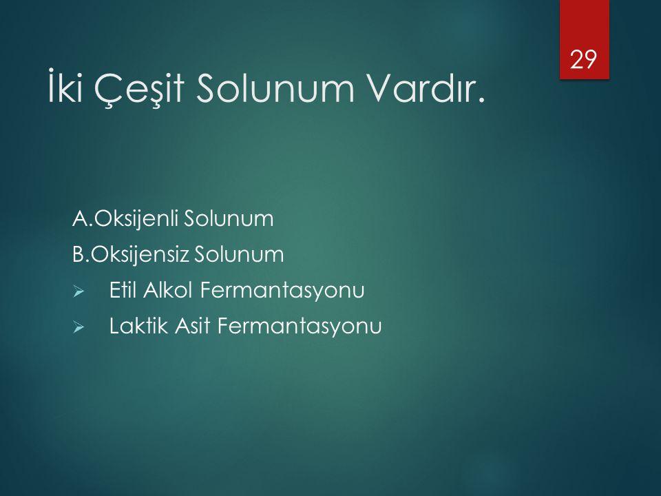 İki Çeşit Solunum Vardır. A.Oksijenli Solunum B.Oksijensiz Solunum  Etil Alkol Fermantasyonu  Laktik Asit Fermantasyonu 29
