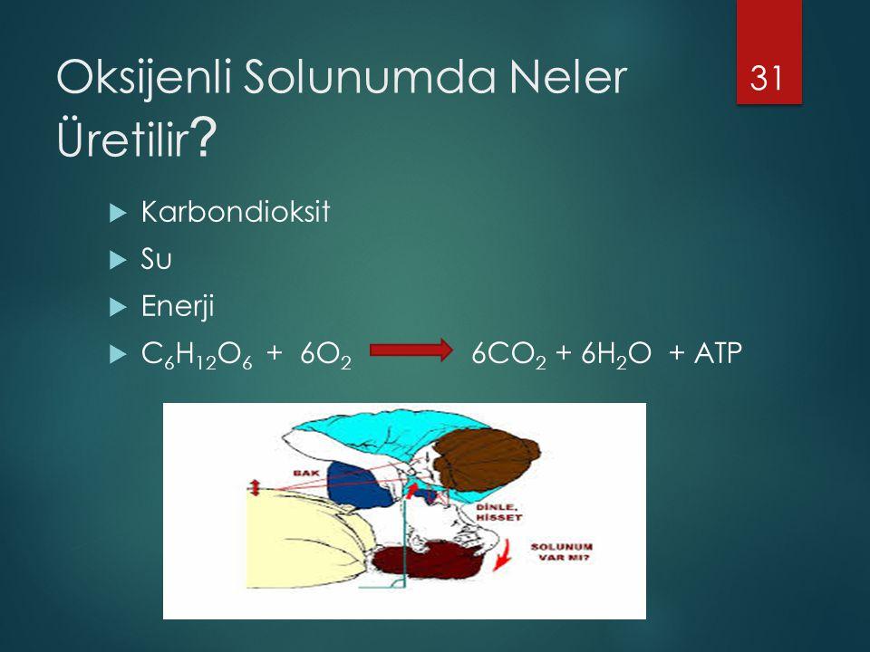 Oksijenli Solunumda Neler Üretilir ?  Karbondioksit  Su  Enerji  C 6 H 12 O 6 + 6O 2 6CO 2 + 6H 2 O + ATP 31