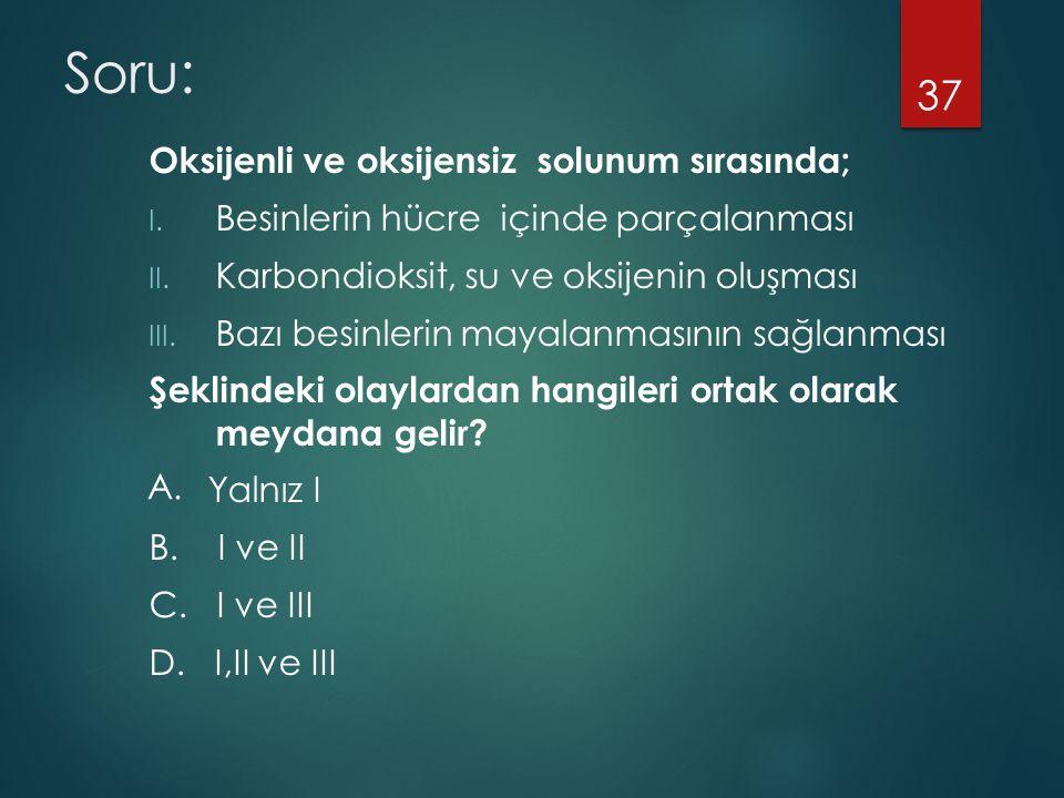 Soru: Oksijenli ve oksijensiz solunum sırasında; I. Besinlerin hücre içinde parçalanması II. Karbondioksit, su ve oksijenin oluşması III. Bazı besinle