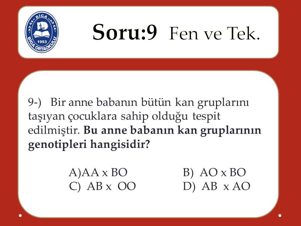 9-) Bir anne babanın bütün kan gruplarını taşıyan çocuklara sahip olduğu tespit edilmiştir. Bu anne babanın kan gruplarının genotipleri hangisidir? A)