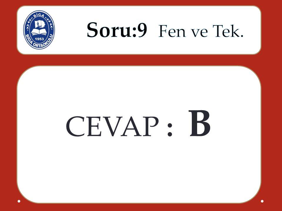 CEVAP : B