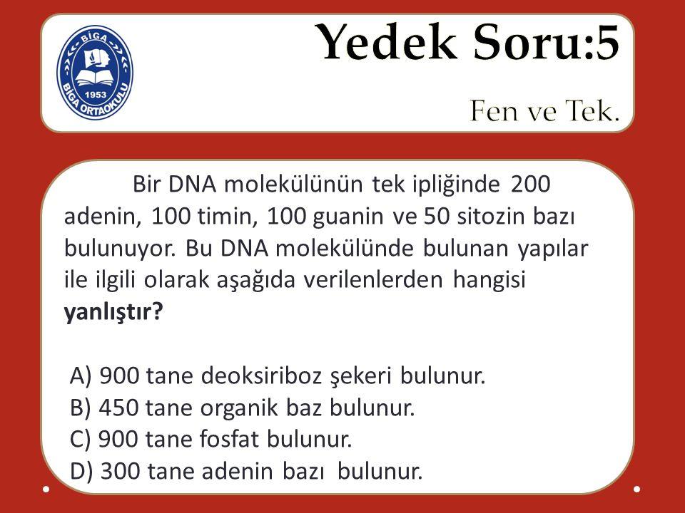 Bir DNA molekülünün tek ipliğinde 200 adenin, 100 timin, 100 guanin ve 50 sitozin bazı bulunuyor. Bu DNA molekülünde bulunan yapılar ile ilgili o