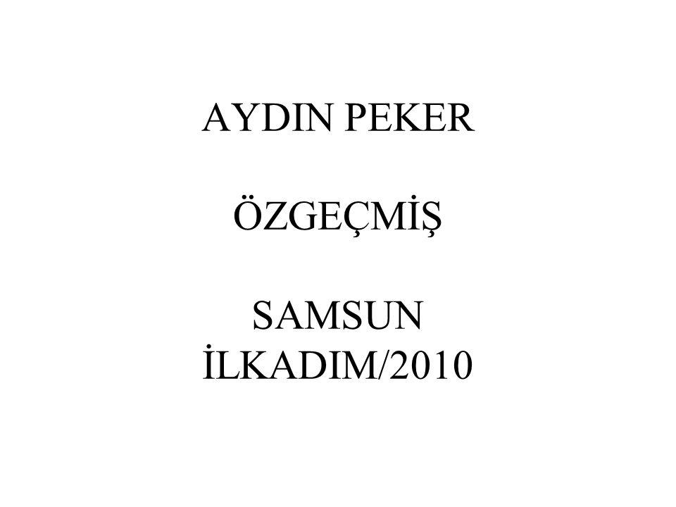 AYDIN PEKER ÖZGEÇMİŞ SAMSUN İLKADIM/2010