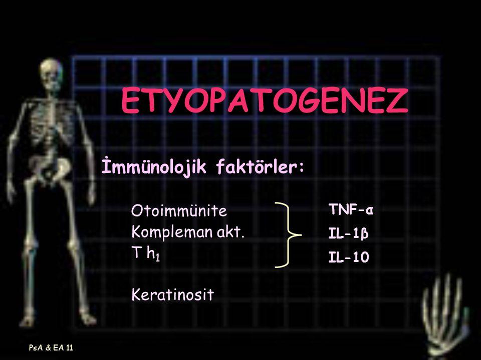 PsA & EA 11 ETYOPATOGENEZ İmmünolojik faktörler: Otoimmünite Kompleman akt. T h 1 Keratinosit TNF-α IL-1β IL-10