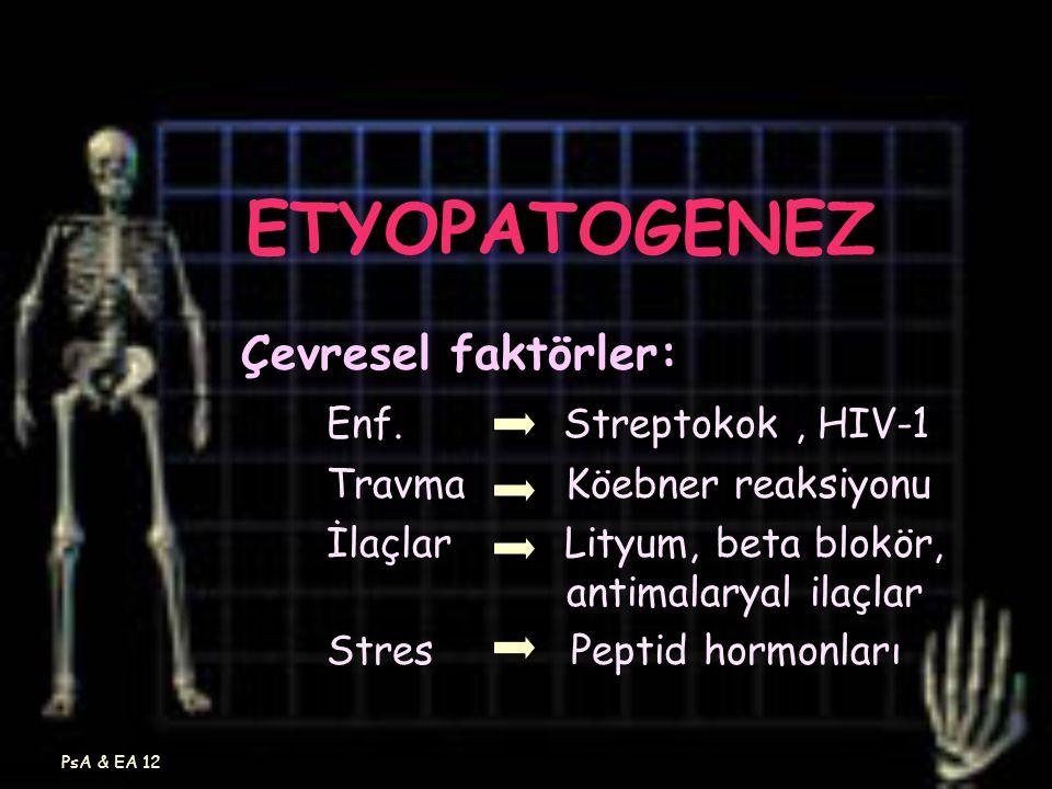 PsA & EA 12 ETYOPATOGENEZ Çevresel faktörler: Enf. Streptokok, HIV-1 Travma Köebner reaksiyonu İlaçlar Lityum, beta blokör, antimalaryal ilaçlar Stres