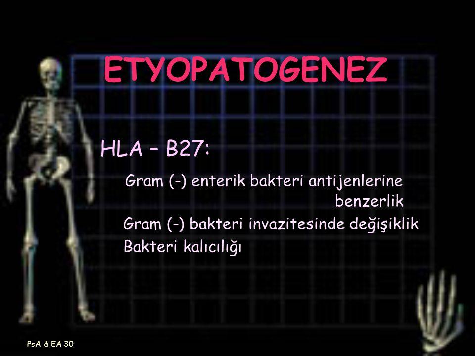 PsA & EA 30 ETYOPATOGENEZ HLA – B27: Gram (-) enterik bakteri antijenlerine benzerlik Gram (-) bakteri invazitesinde değişiklik Bakteri kalıcılığı
