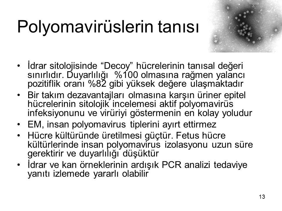 """13 Polyomavirüslerin tanısı İdrar sitolojisinde """"Decoy"""" hücrelerinin tanısal değeri sınırlıdır. Duyarlılığı %100 olmasına rağmen yalancı pozitiflik or"""