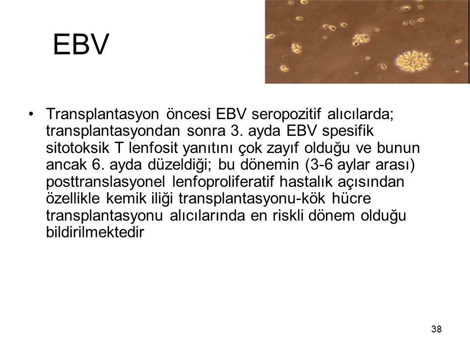 38 EBV Transplantasyon öncesi EBV seropozitif alıcılarda; transplantasyondan sonra 3. ayda EBV spesifik sitotoksik T lenfosit yanıtını çok zayıf olduğ