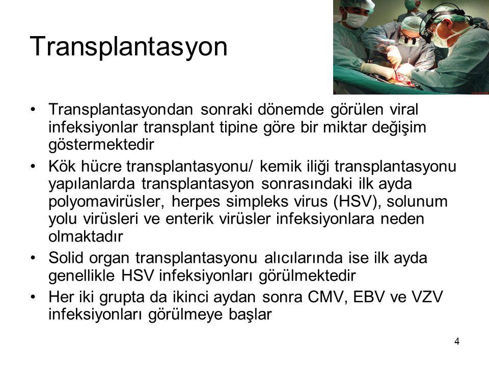 5 Transplantasyon CMV, EBV, VZV, HBV, HCV, polyomavirüsler ve adenovirüsler konakta hayat boyu süren infeksiyonlara yol açan virüslerdir ve doku ve organlarda bulunurlar Bu nedenle alıcıdaki infeksiyon genellikle reaktivasyon veya verici kaynaklı olarak gelişmektedir