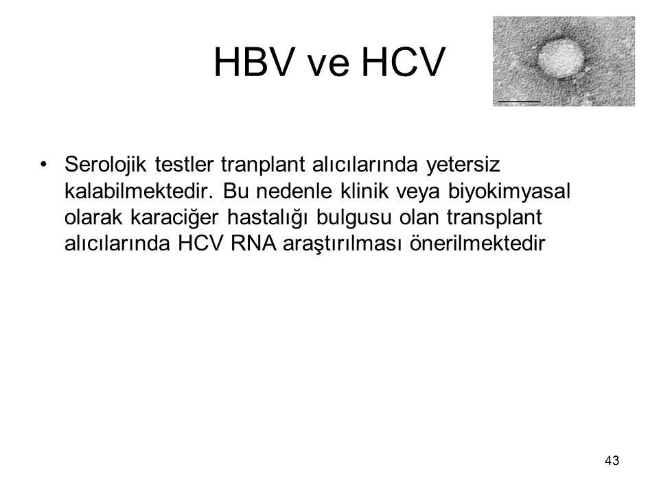 43 HBV ve HCV Serolojik testler tranplant alıcılarında yetersiz kalabilmektedir. Bu nedenle klinik veya biyokimyasal olarak karaciğer hastalığı bulgus