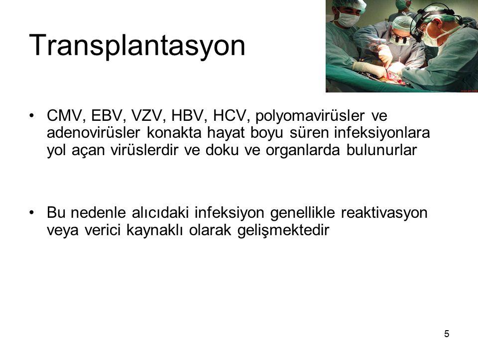 5 Transplantasyon CMV, EBV, VZV, HBV, HCV, polyomavirüsler ve adenovirüsler konakta hayat boyu süren infeksiyonlara yol açan virüslerdir ve doku ve or