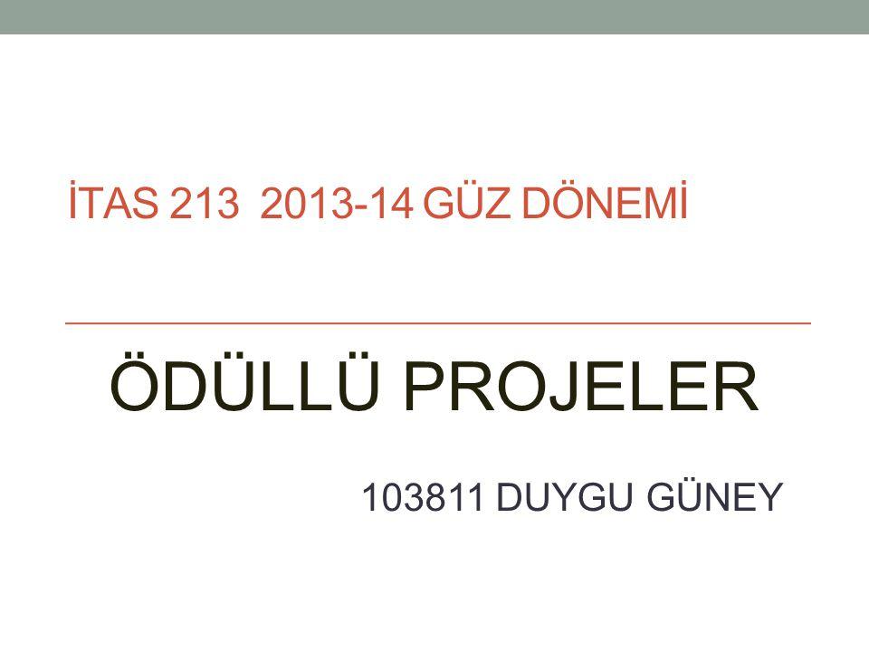 İTAS 213 2013-14 GÜZ DÖNEMİ ÖDÜLLÜ PROJELER 103811 DUYGU GÜNEY